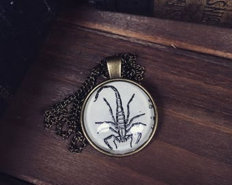 SCORPION Necklace - Scorpion Illustration - Scorpion keychain - Scorpion Keyring - Scorpio gifts - Zodiac - Desert Animals - oddities curios