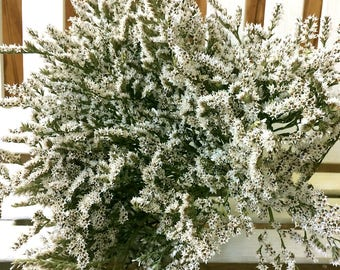 DRIED Flowers German Statice Dried FLOWER Bunch White Flowers Wedding Flowers Dried Bouquet  Floral Supplies Country Flowers Natural Drieds