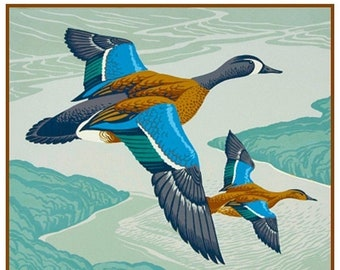GREAT SALE Digital DOWNLOAD Canadian Teal Ducks Birds by A.J. Casson Counted Cross Stitch Chart / Pattern