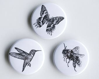 "Bee, butterfly hummingbird pins - pollinators Pin-Back Buttons - Set of 3 Pin-Back Buttons - 1.5"" - Woodland pin Animal pin Pingame Badges"