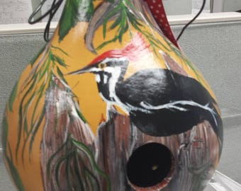 Hand painted woodpecker gourd birdhouse, pileated woodpecker birdhouse, hand painted gourd