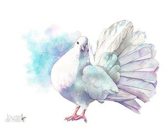 Dove print of watercolour painting A4 size D22217, Dove watercolor painting print, Dove bird art print, Peace print, Dove painting