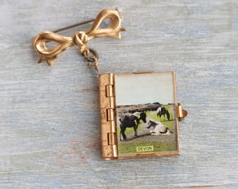 Miniature Postcard Book Lapel Pin - Vintage Brooch  - Souvenir From Devon - Made in England