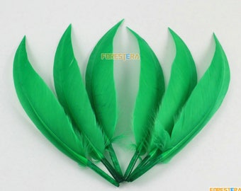 50 Pieces Green Feather 10-15cm (YM374)