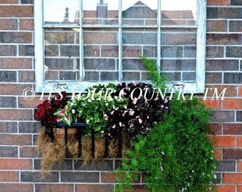 Summer Garden Wall Planter Photo Image, Outdoor Photography,Vintage Wooden Window Rooftop Reflection Instant Digital Download itsyourcountry