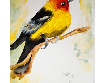 Signed Watercolor Print, Spring Bird, 8.5x11 inches, Nature Painting, Wildlife art, Watercolor painting, Wall art