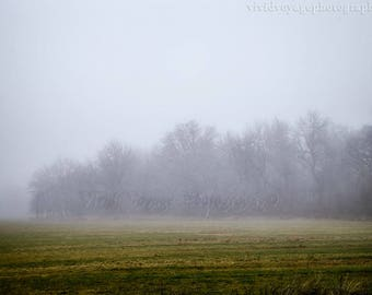 Farm Landscape Photograph, Rustic Wall Art, Fog Photograph, Country Landscape, Tree Photo, Nature Photography, Farmhouse Decor, Rustic Decor