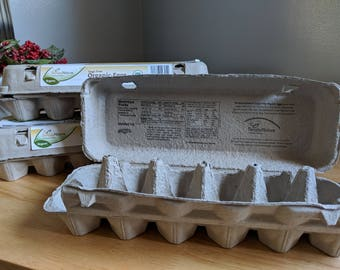 Egg Cartons- Recycled paper