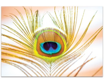 Contemporary Wall Art 'Peacock Sprout' by Meirav Levy - Wildlife Decor Modern Peacock Artwork on Metal or Plexiglass