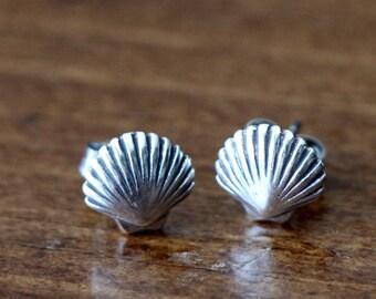 Clam Shell Stud Earrings- Sterling Silver- Beach Jewelry- Sailors Jewelry- Ocean Jewelry- Ocean Earrings