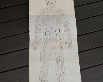 Japanese Woodblock Print Book, Jinshin Kyuuri Medical Science, 1800s, Matsuyama Toan, Antique Book, Meiji Period, Japanese Writing, Skeleton