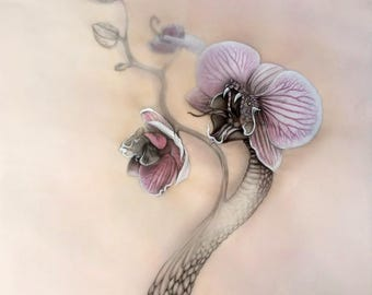 Print - Snakeorchid