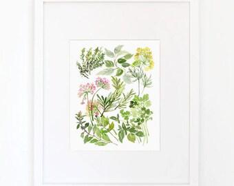 Herb Composition No. 2 - Watercolor Art Print