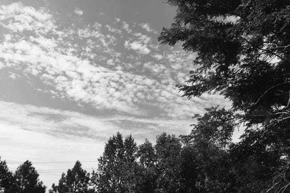 Summer Evening Black and White Fine Art Photography Print