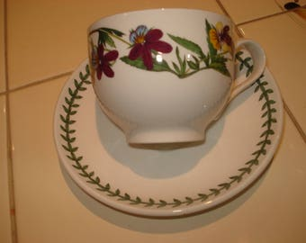 Portmeirion Pottery Botanical Garden Vintage Tea Cup and Saucer
