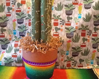 Cactus Pincushion in Clay Pot