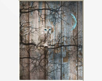 Rustic Modern Decor, Owl On Tree Branch Moon Decor, Bedroom Living Room  Rustic Owl