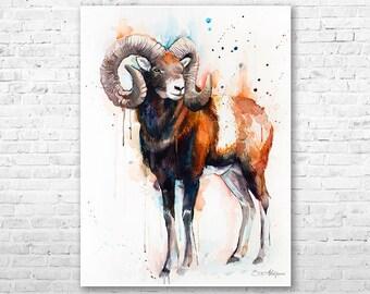 Mouflon watercolor painting print by Slaveika Aladjova, ram, art, animal, illustration, home decor, wall art, gift, portrait, Contemporary