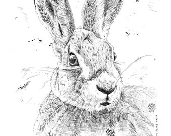 Original pen and ink drawing of a rabbit