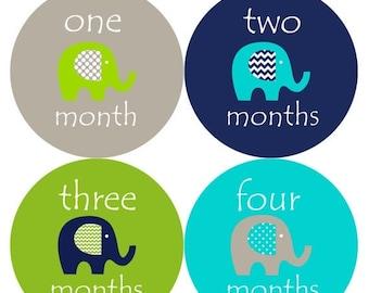 Monthly Baby Milestone Stickers Baby Boy Baby Shower Gift One-Piece Baby Stickers Monthly Baby Stickers Baby Month Stickers 151