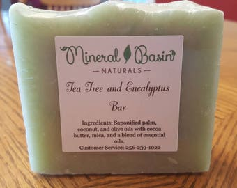 Tea tree and eucalyptus bar