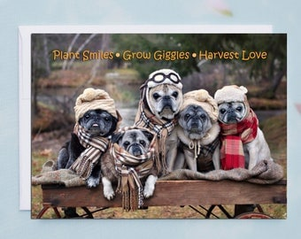Box of 10 Funny Thanksgiving Cards - Plant Smiles Grow Giggles  - 5x7