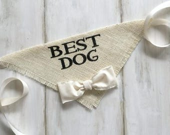Small READY TO SHIP Ivory Best Dog Bandana with Bow Tie Wedding Collar Boy Bowtie Engagement Save the Date Photo Prop