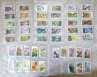 Gallaher Ltd Cigarette cards - Garden Flowers - full set of 48 cards
