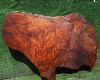 BS981   Redwood  burl slab