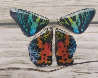 Sunset Moth wings. Artbeads. Handmade fantasy beads. Insect wings. Entomologist. Resin