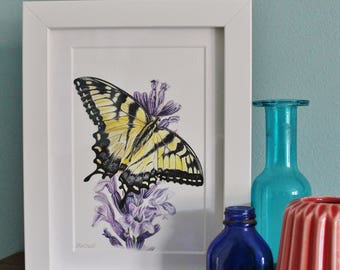 Butterfly Art Watercolour Painting - Insect - Framed Butterfly giclee print - Butterfly Art Picture - Picture and gift for the home