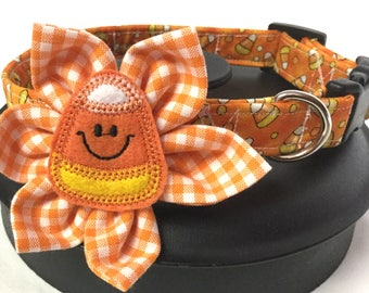 Dog collar, candy corn dog collar, orange dog collar, candy corn feltie, flower dog collar, adjustable dog collar, fall dog collar