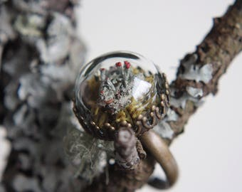 mini terrarium ring // cladonia lichen