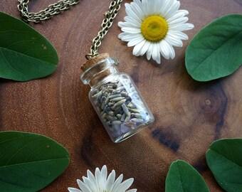 Botanical necklace, lavender  neckace, flower  bottle Necklace,   crystal necklace, terranium, bottle necklace,  amethyst