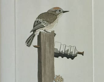Yvonne Davis Hand Colored Etching
