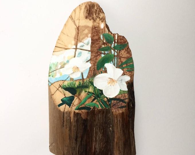 Wild Rose / tiny original painting + pyrography art on raw cedar / wild rose painting / tree pyrography / woodland art