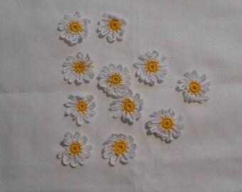 12 flowers Daisy crochet cotton