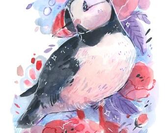 Puffin -- Art Print