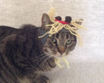 Spaghetti and Meatballs Hat for Cats
