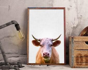 Cow Print, Cow Nursery, Farm Animals Nursery, Animal Portrait, Farm Animal Print, Cattle Poster, Cow Photography, Cow Wall Art Large (W0540)