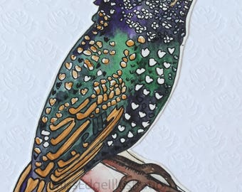 """Illustrated Hand Made Greeting Card """"Starling"""""""
