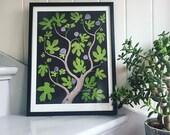Fig tree - Fine Art Giclée limited edition print of a plant