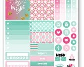 Ready to ship Glitter sampler weekly stickers kit, Suitable for Erin Condren vertical planner, Weekly planner stickers, Mini weekly kit