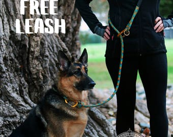 Hands-Free Climbing Rope Leash || Perfect for The Ourdoor Dog! || Hiking, Exploring, Running, Walking, etc.