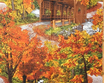 Autumn made by Timeless Treasures.  This is a fabric panel.
