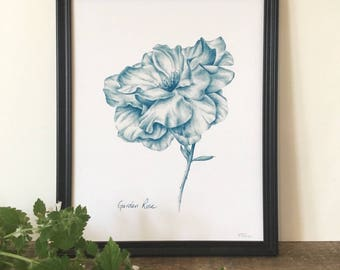 Garden Rose print