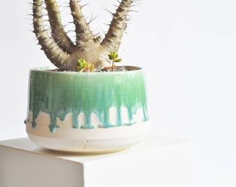 7 Inch Planter - Green Drip - Made to Order