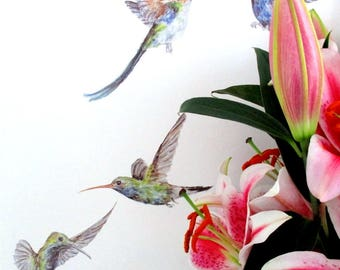 Hummingbird wall stickers, dorm room wall art, humming bird wall decals, bird wallpaper, bird home decor, tropical wall decals, bird art