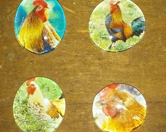 Rooster Magnets - Farm Magnets - Kitchen Magnets - Rooster Decpr
