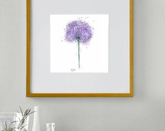 Framed allium print // allium illustration // allium drawing // allium painting // purple flower prints // flower wall art // flower print
